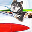 Auto Dog