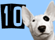 Top 10 Dog Names