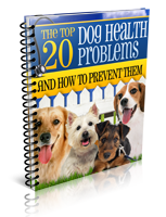 Dog Health Report Cover