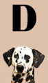 D Girl Dog Names