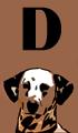 D Dog Names