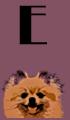 E Dog Names