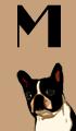 M Dog Names