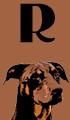 R Dog Names