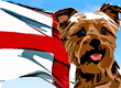 English Dog Names