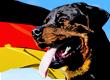 German Dog Names