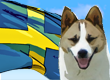 Swedish Dog Names