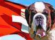 Swiss Dog Names