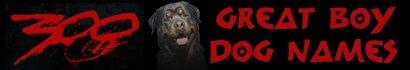 300 Boy Dog Names