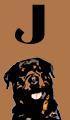J Dog Names