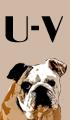 U-V Dog Names